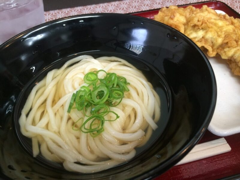 香川丸亀『純手打ち山ともうどん』やまうちの弟子のひやあつ細麺とゲソ天!