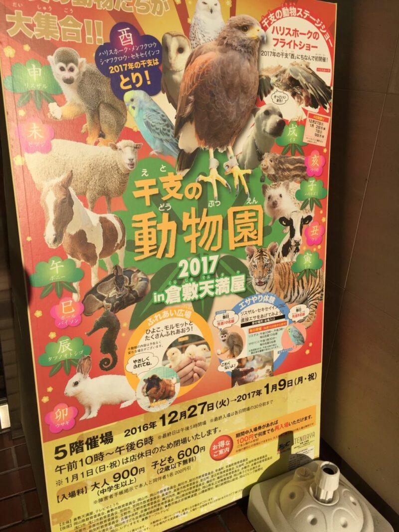 倉敷天満屋『干支の動物園』ハリスホークと十二支のゆかいな仲間たち!