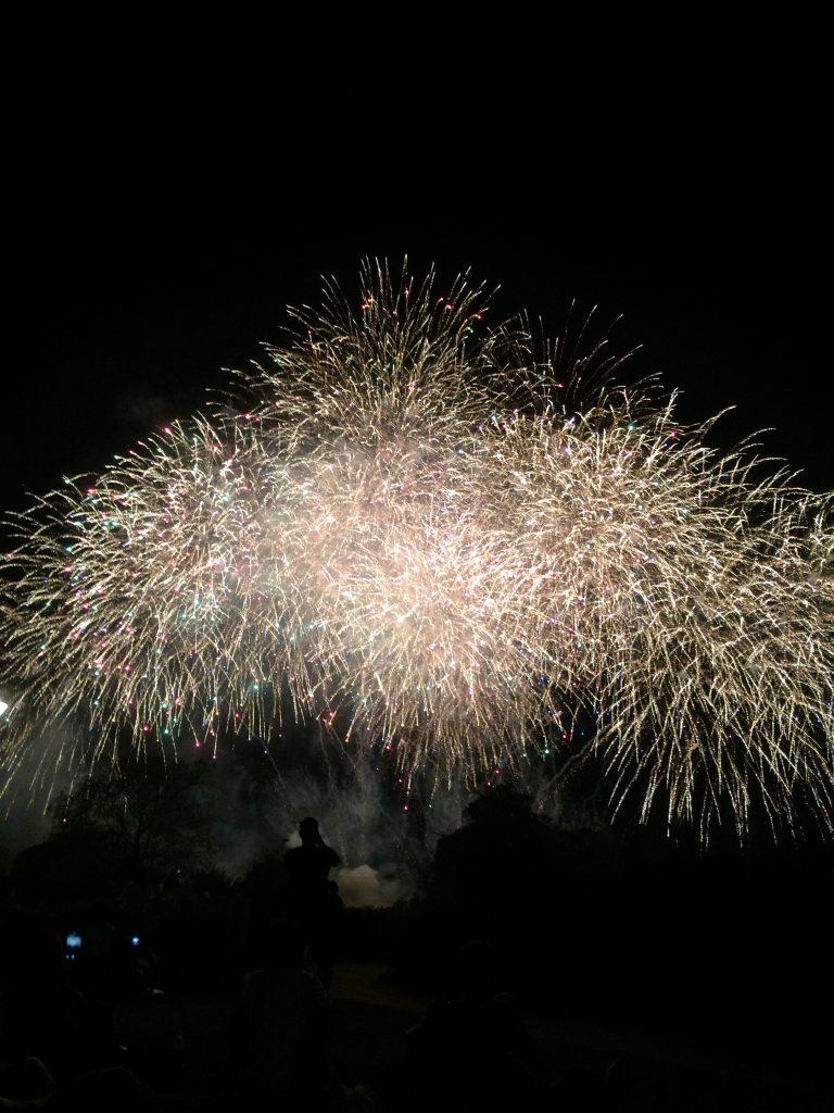 岡山県浅口市『あさくち花火大会』芝生に寝転がって見上げる花火は最高!
