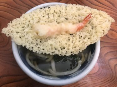 香川三豊『手打ちうどん渡辺』デカ過ぎ木の葉型天ぷらうどんと肉うどん!