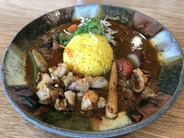 岡山古都『スープカレーなっぱ』スパイスと鶏の旨味凝縮本場大阪のカレー!